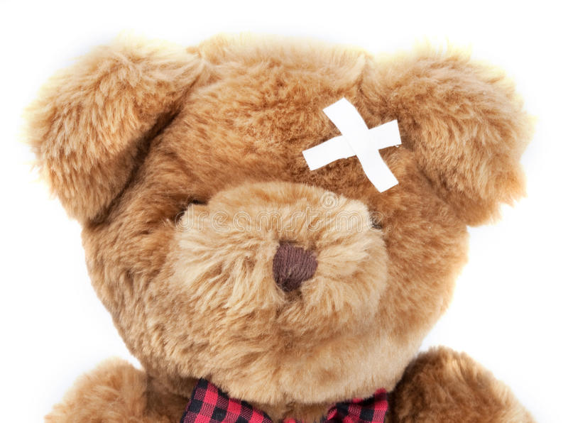 Download Bear Ill Stock Images - Image: 11222464