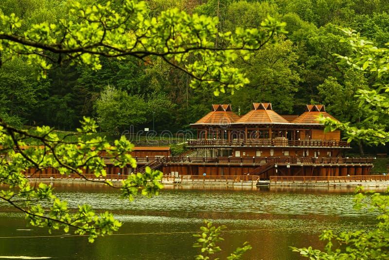 Bear lake detail royalty free stock images