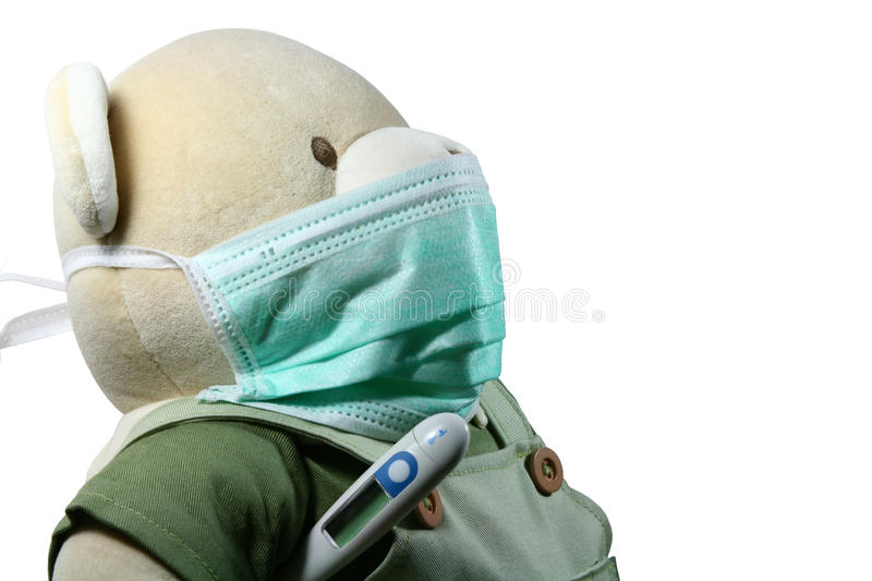 Bear With Mask Stock Photography