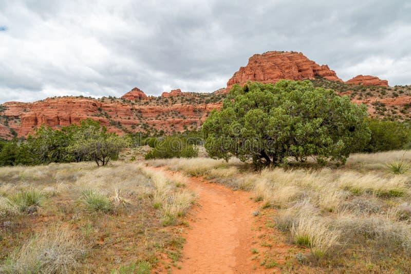 Bear Mountain-Spur Sedona Arizona lizenzfreies stockbild