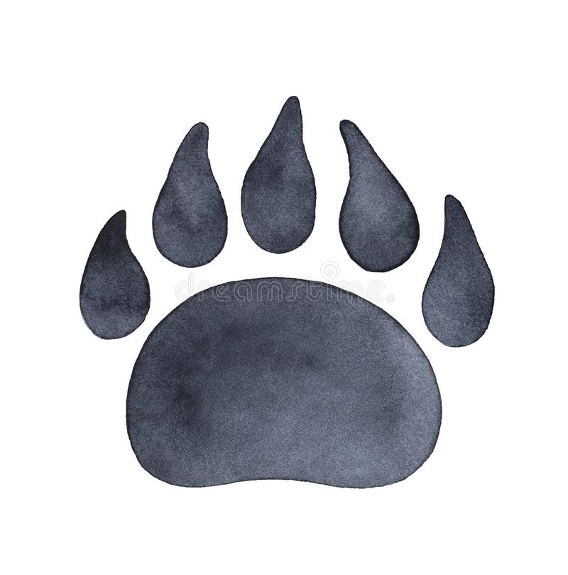 Bear paw print watercolour illustration. stock image