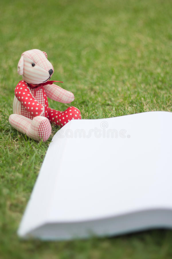 Download Bear Reading The Book Stock Photo - Image: 83720071