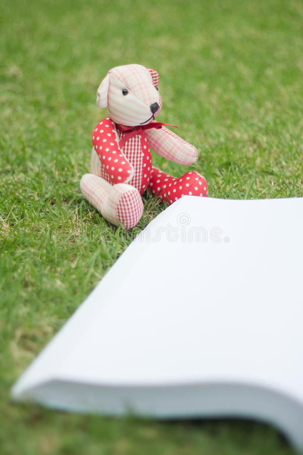 Download Bear Reading The Book Stock Photo - Image: 83720228