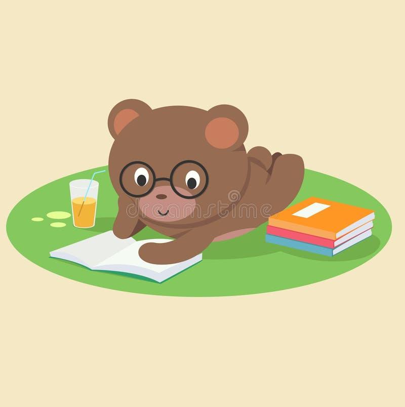 Bear reading book lying down. Illustration of bear reading book lying down vector illustration