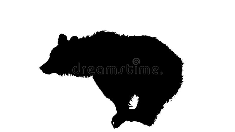 Bear Silhouette. Vector Silhouette illustration of a brown bear. Is shown on white background stock illustration