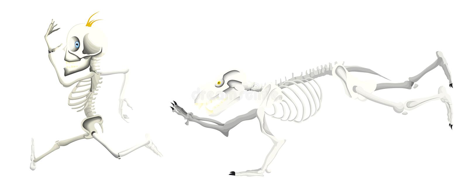 Bear skeleton try to catch a man skeleton. A bear skeleton running after a man skeleton because he is hungry stock illustration