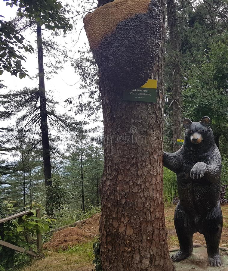 Bear statue and honey bee replica in park stock photos