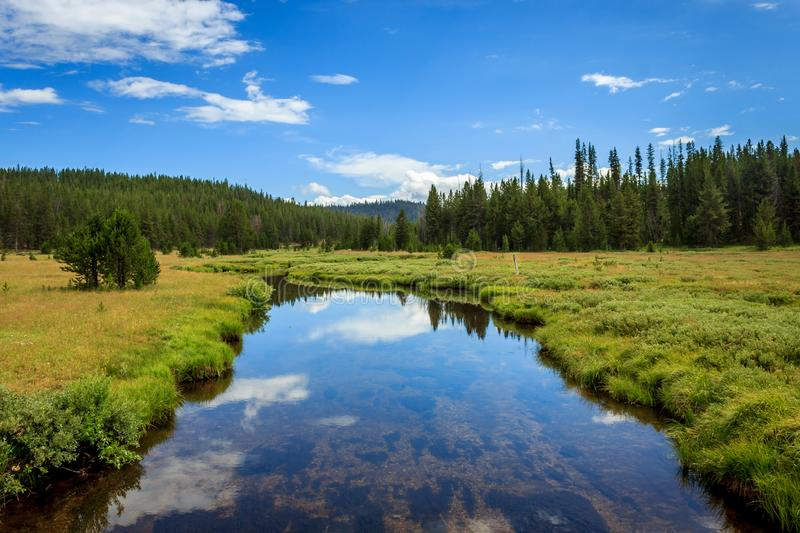 Bear Valley Creek. Winding through the Boise National Forest royalty free stock photo