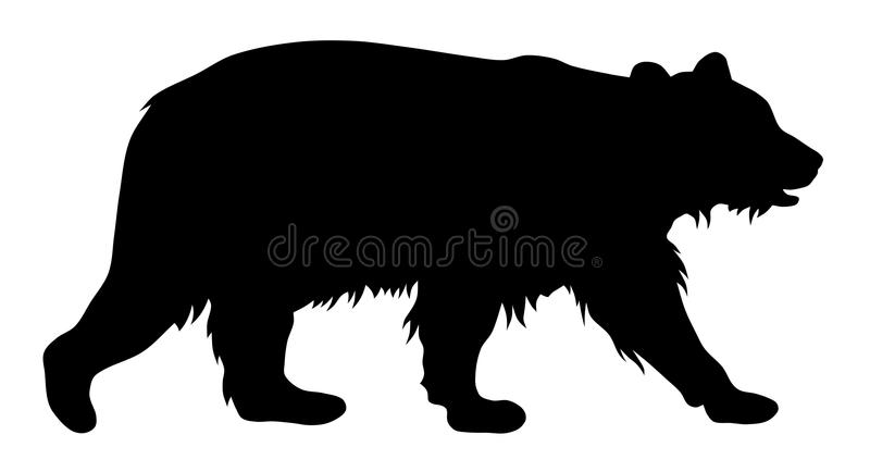 Bear royalty free illustration
