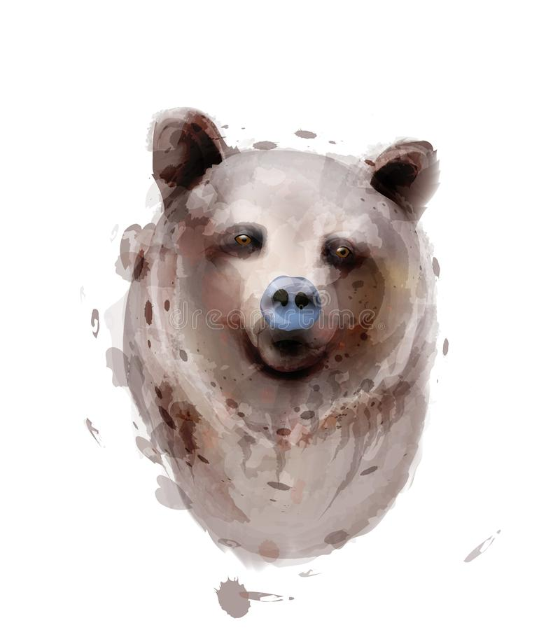 Bear Vector watercolor isolated on white. Wildlife animals stock illustration