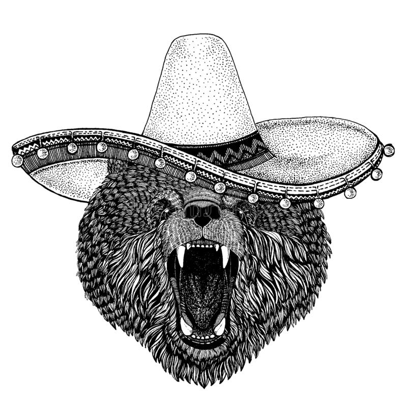 Bear wearing traditional mexican hat. Classic headdress, fiesta, party. Bear wearing traditional mexican hat. Classic headdress, fiesta, party stock illustration