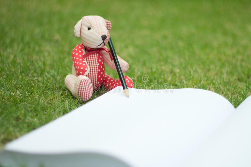 Download Bear Write The Book Stock Photo - Image: 83720064