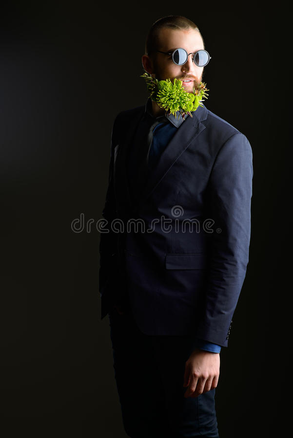 Beard concept royalty free stock image