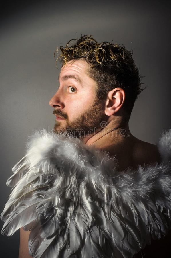 Bearded Angel Wings. Bearded angel with feathered wings and dramatic lighting royalty free stock image
