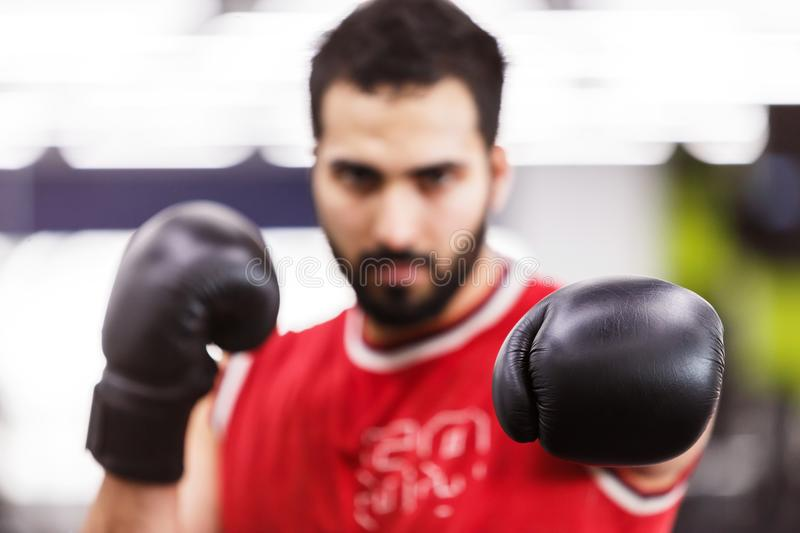 The Boxing Man. Bearded boxing man wears red shirt and black gloves in the ring royalty free stock image