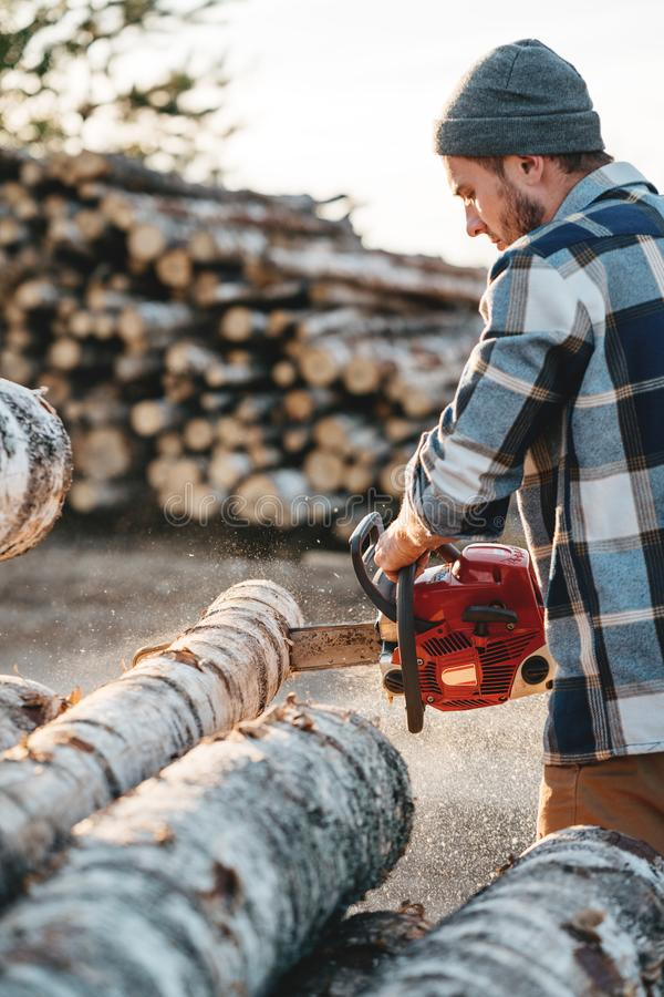 Bearded brutal lumberjack wearing plaid shirt sawing tree with chainsaw for work on sawmill. Sawdust fly apart royalty free stock photography
