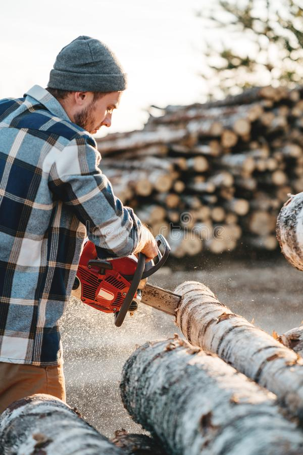 Bearded brutal lumberjack wearing plaid shirt sawing tree with chainsaw for work on sawmill. Wooden sawdust fly apart royalty free stock images