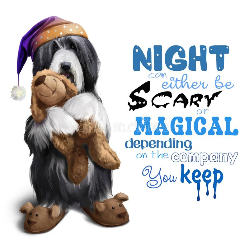 Bearded collie in a night cap with a toy in his paws vector illustration