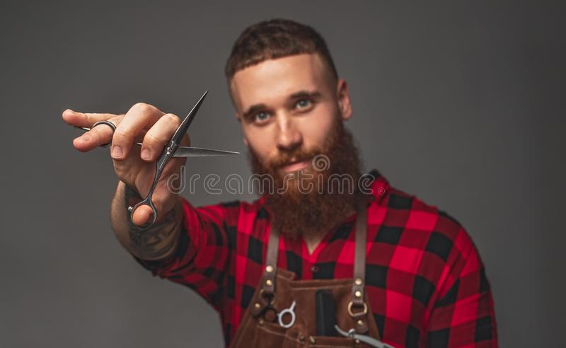 Bearded hipster with scissors. Stylish handsome bearded guy in checkered shirt showing sharp scissors while working in barbershop against gray background stock photo