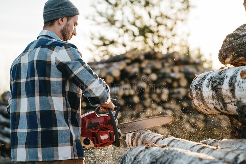 Bearded lumberjack in plaid shirt sawing tree with chainsaw stock photography
