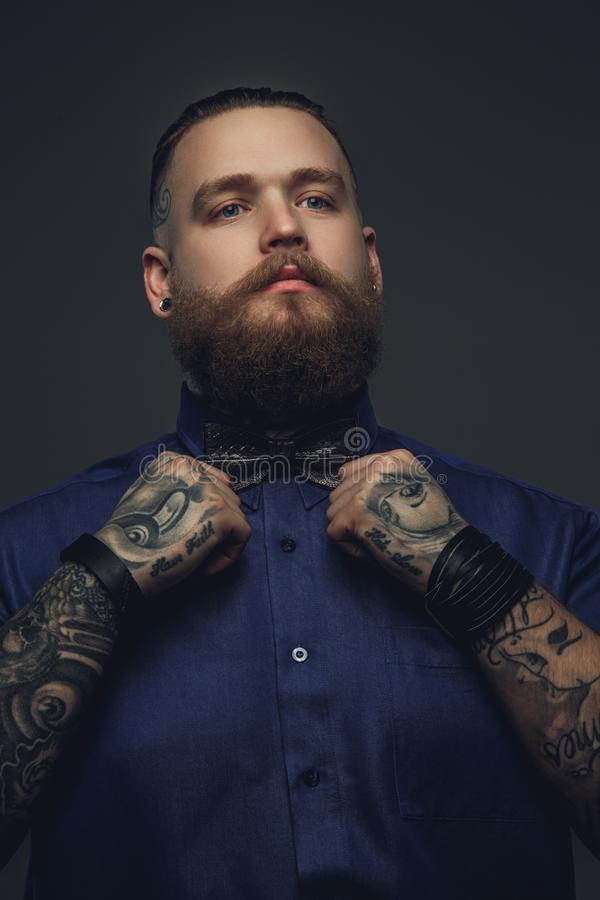 Bearded male in blue shirt and bow tie. stock photos