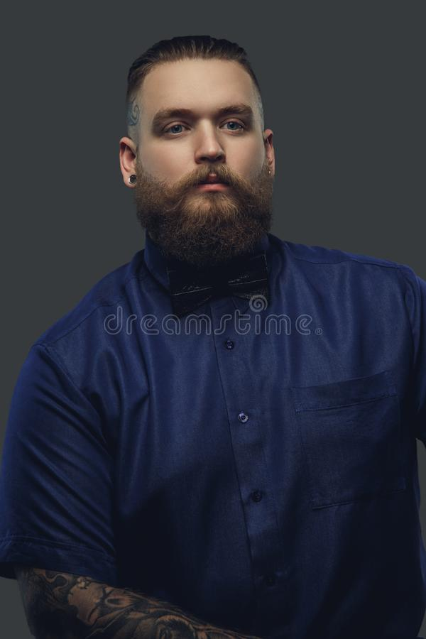 Bearded male in blue shirt and bow tie. stock photo