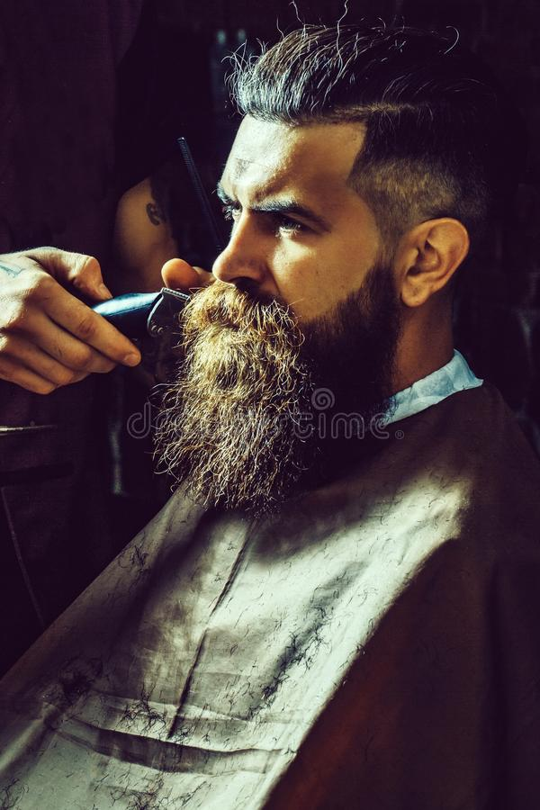 Bearded man getting long beard haircut with clipper. Bearded man, brutal, caucasian hipster with moustache, unshaven guy with stylish brunette hair getting long stock photos