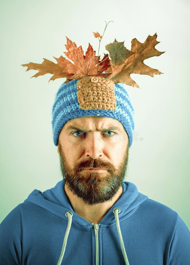 Bearded Man are getting ready for autumn sale. Autumn Leaves Festival. Black friday sale. Isolated object on gray stock photography