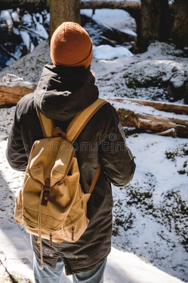 A bearded man in a hat and a backpack stands with his back in winter in a coniferous forest. The concept of winter royalty free stock photo