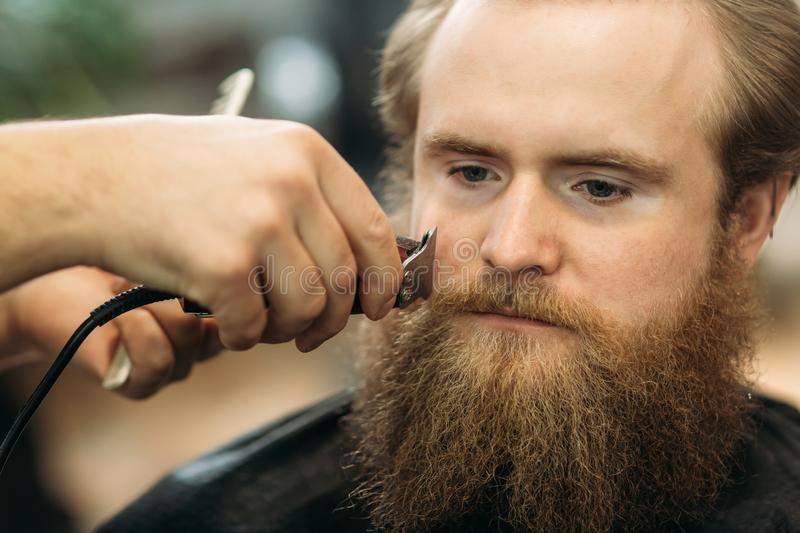 Bearded man having a haircut with a hair clippers royalty free stock photography