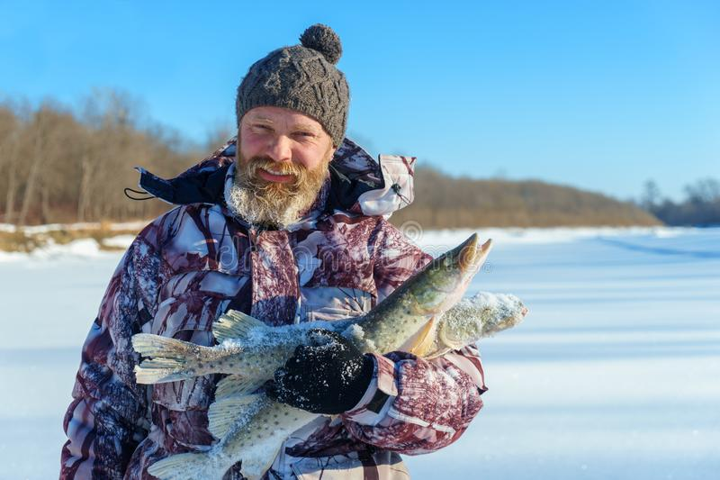 Bearded man is holding frozen fish after successful winter fishing at cold sunny day. Under clear blue sky royalty free stock image