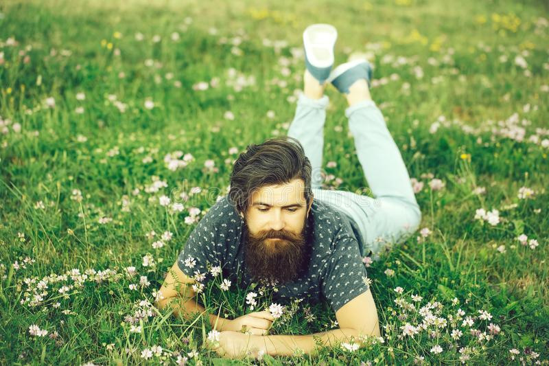 Bearded man laying on green grass. Handsome bearded young man hipster with long beard and mustache on happy face relax and laying on green grass field with wild royalty free stock image