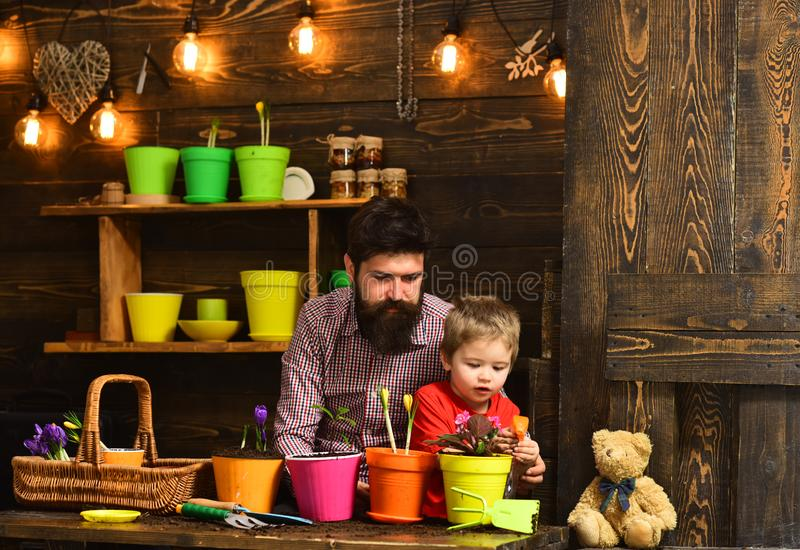 Bearded man and little boy child love nature. Flower care watering. Soil fertilizers. happy gardeners with spring flower stock images