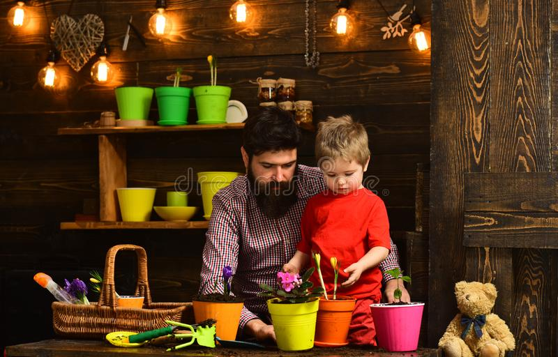 Bearded man and little boy child love nature. Flower care watering. Soil fertilizers. happy gardeners with spring stock photos