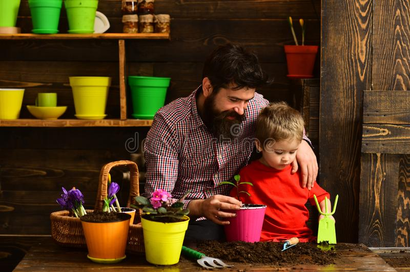 Bearded man and little boy child love nature. happy gardeners with spring flowers. Family day. Greenhouse. Father and. Bearded men and little boy child love royalty free stock photos