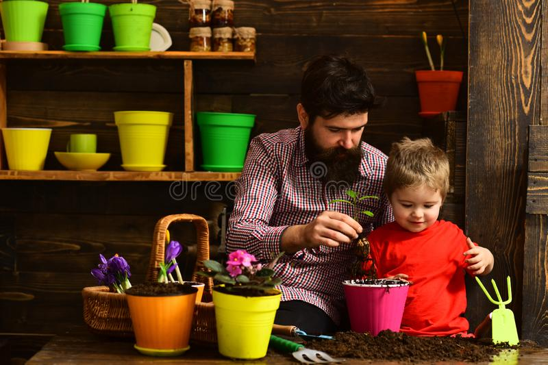 Bearded man and little boy child love nature. happy gardeners with spring flowers. Family day. Greenhouse. Father and. Bearded men and little boy child love stock photos