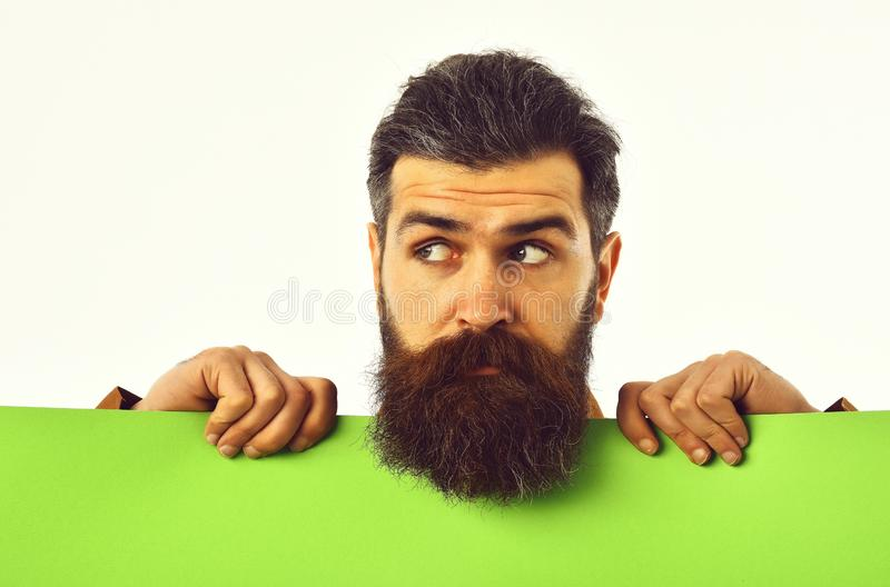 Surprised bearded man hipster with green paper isolated on white royalty free stock images