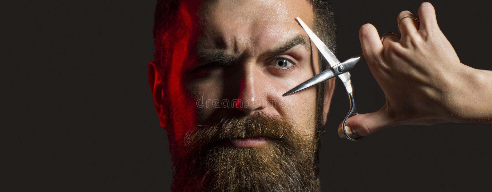 Bearded man, long beard, brutal, with moustache, haircut. Barber scissors. Mens haircut. Handsome bearded. Barbershop. Long beard Vintage barbershop shaving royalty free stock photo