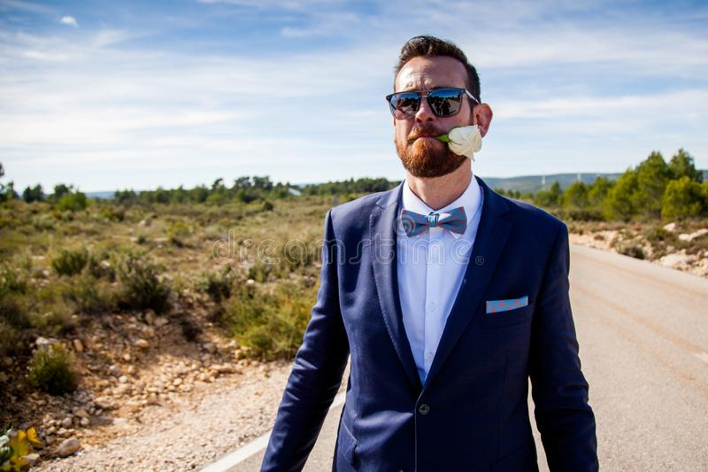 Bearded man with sunglasses and dress with suit and bow tie holds a flower with his mouth stock photography