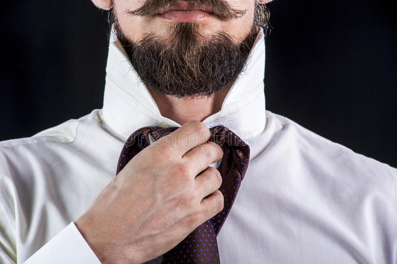 Bearded man trying on his necktie stock photos