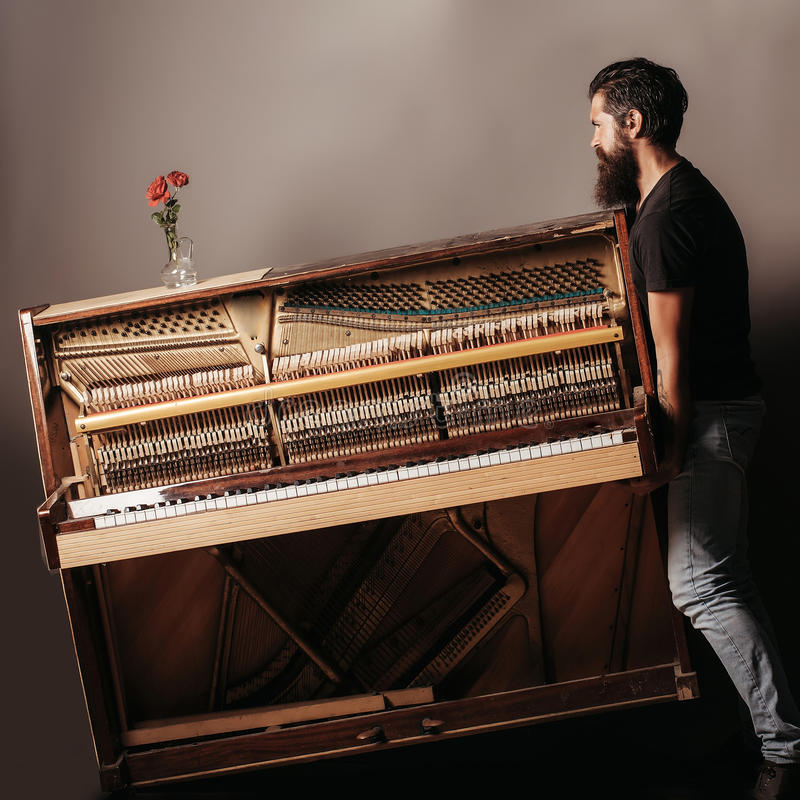 Bearded man trying to move wooden piano with rose. Handsome bearded strong man with stylish hair mustache and beard trying to move old wooden or wood open piano stock photos