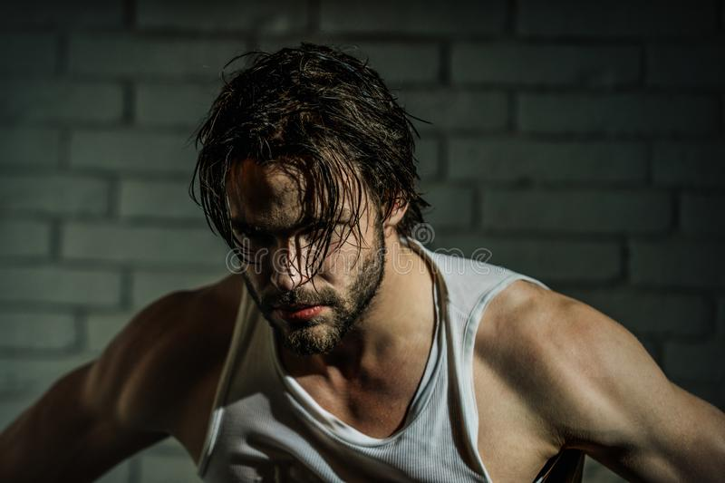 Bearded man with wet long hair in white singlet. Macho with muscular shoulders, arms. Masculinity, power, strength. Beauty, barber, salon royalty free stock image