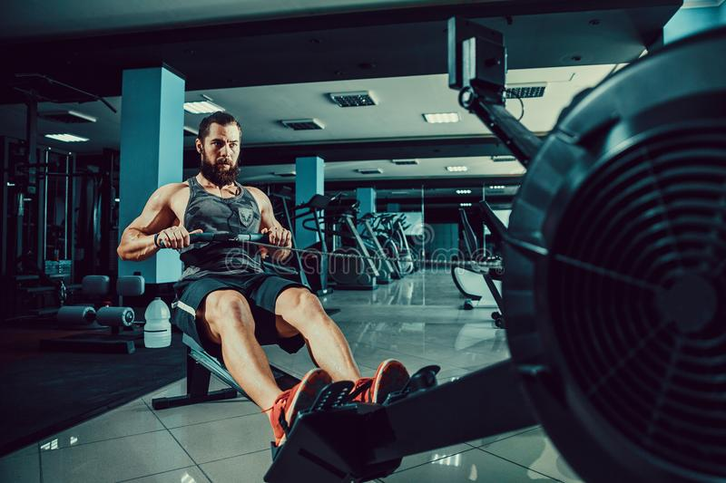 Muscular fit man using rowing machine at gym. Bearded Muscular Fit Man Ssing Rowing Machine at Functional Training Gym royalty free stock image
