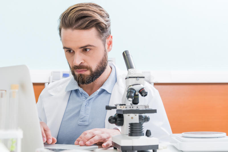 Bearded scientist working with microscope and laptop in laboratory. Concentrated bearded scientist working with microscope and laptop in laboratory stock photos