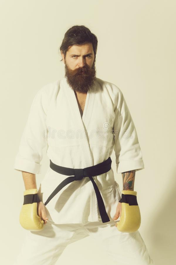 Bearded serious karate man in kimono and boxing gloves. Bearded karate man, long beard, brutal caucasian hipster with moustache in white kimono with black belt royalty free stock photos