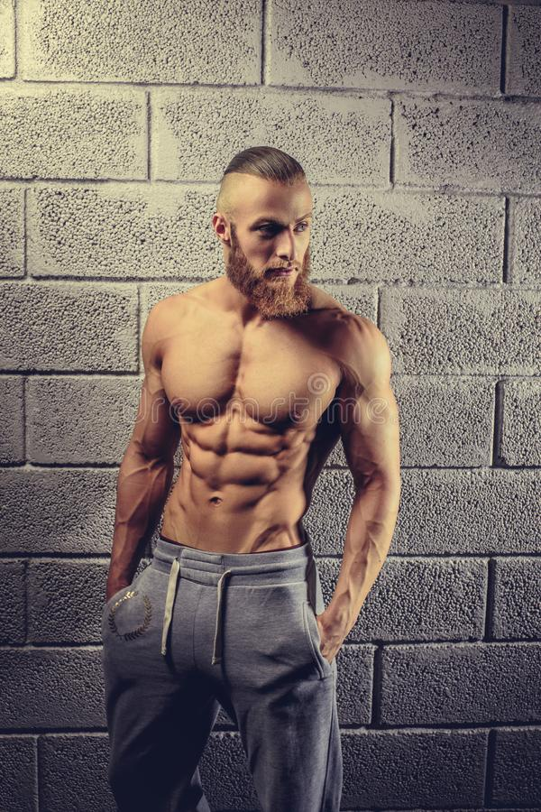 Fitness man posing in a gym club. stock photography