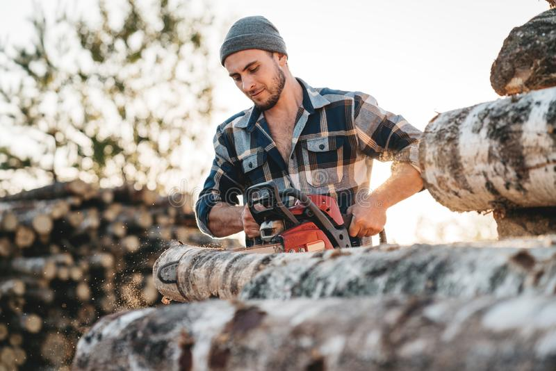 Bearded strong lumberjack wearing plaid shirt using chainsaw for work stock images