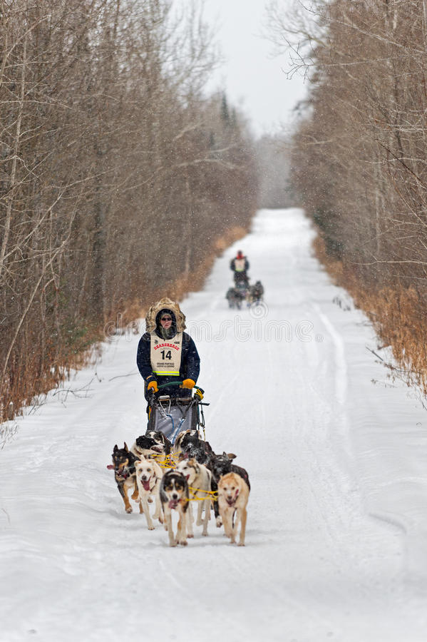 Beargrease 2015 Marathon Ryan Anderson on Trail stock photos