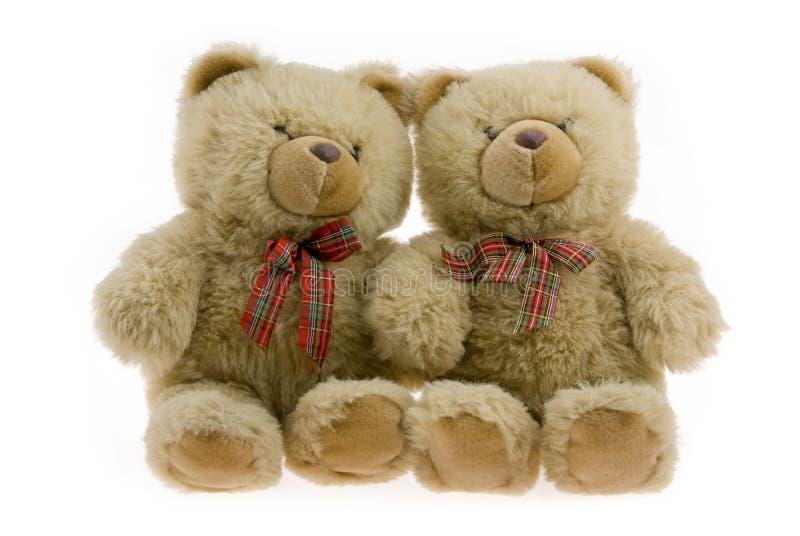 Bears royalty free stock image