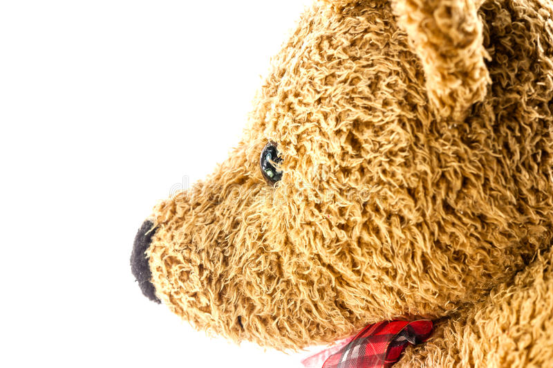 Download Bears Doll On White Background Stock Image - Image: 26788083